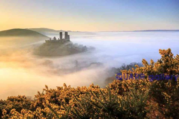 A Golden Morning, Corfe Castle