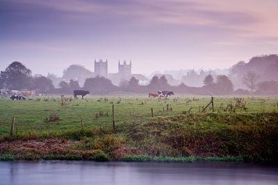 A Misty Morning, Wimborne Minister