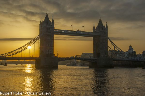 Tower Bridge - birds at dawn