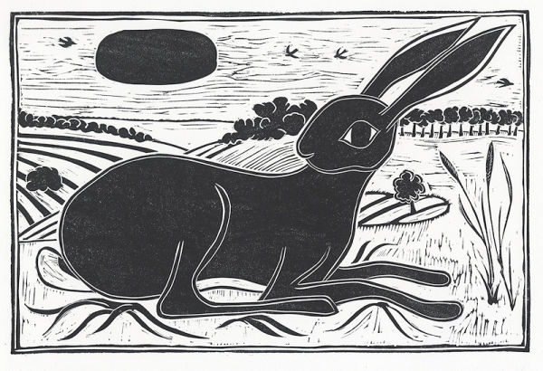 Hare, Fontwell Down