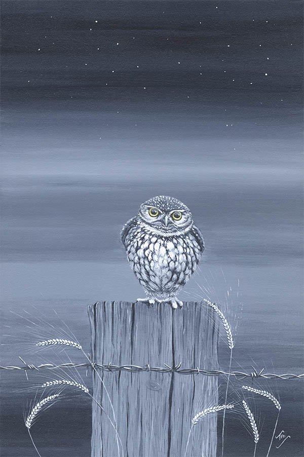 What a Hoot! SOLD