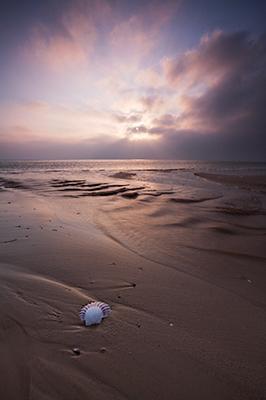 Daybreak, Shell Bay, Studland