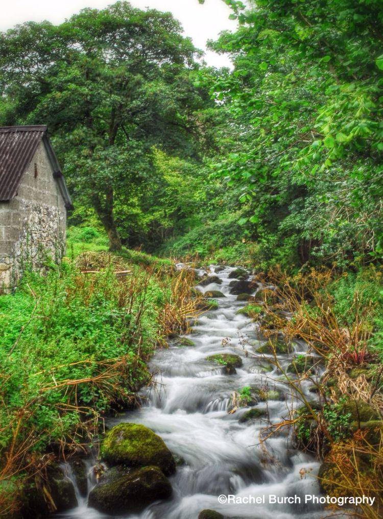 Stream near Peter Tavy Dartmoor