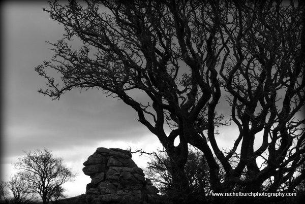 Vixen Tor Dartmoor