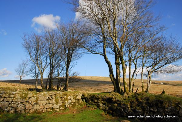Fourwinds Dartmoor