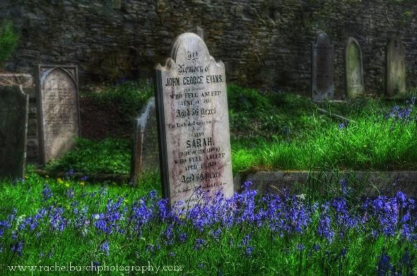 Tavistock's Quaker cemetery April 2017