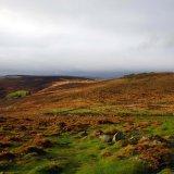 Grimspound Bronze Age village.