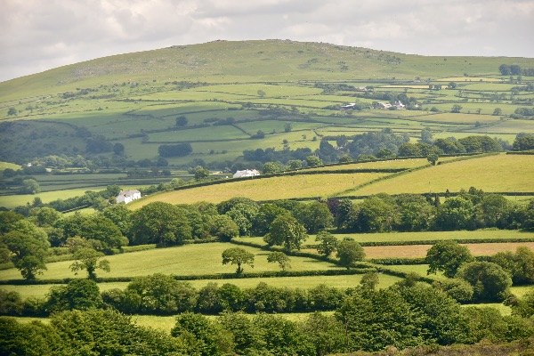 Landscape near Brentor June 2017