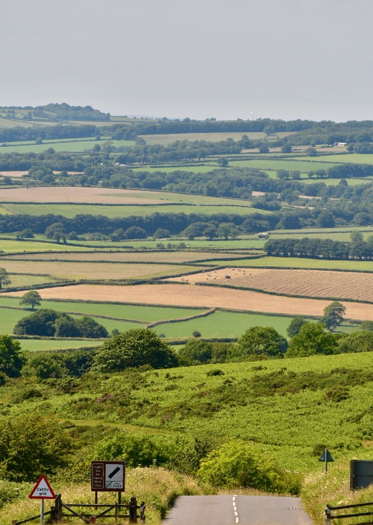 View from Pork Hill July 2017