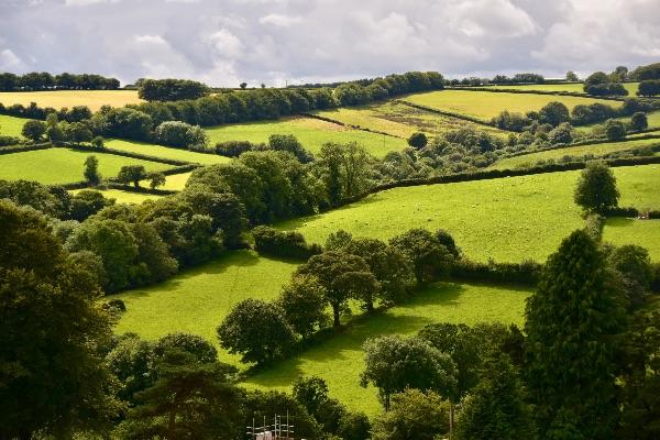 Landscape near Brentor September 2017