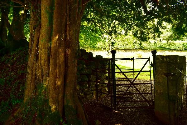 Gate in Sampford Spiney churchyard, August 2017