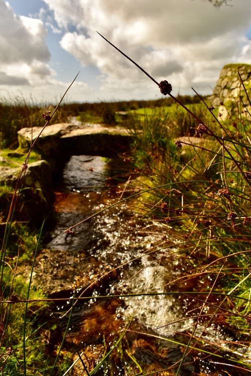 Leat and bridge, Fourwinds September 2017