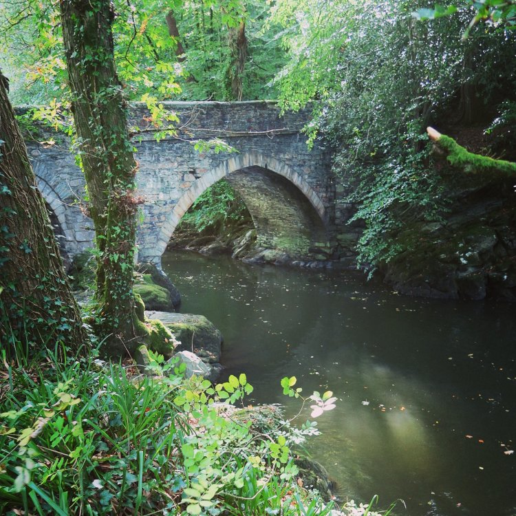 Denham Bridge, Devon