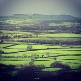 Winter light on fields, Dartmoor January 2016.