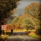 Road to Dartmoor from Tavistock, March 2016