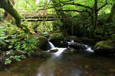 Peter Tavy Coombe Dartmoor