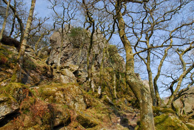 The Dewerstone Dartmoor