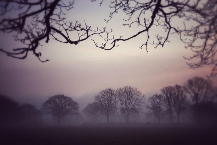Sunrise on Plasterdown, Dartmoor.