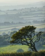 View from Pork Hill car park, Dartmoor. A4 Print only.