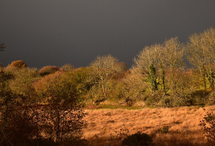 Stormy skies near Whitchurch down, November 2016
