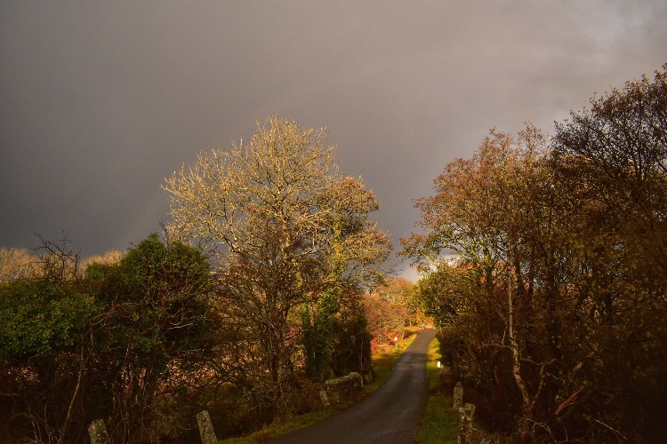 Stormy skies near Whitchurch down November 2017