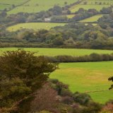 View near Whitchurch down, October 2016