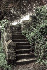 Steps in Tavistock