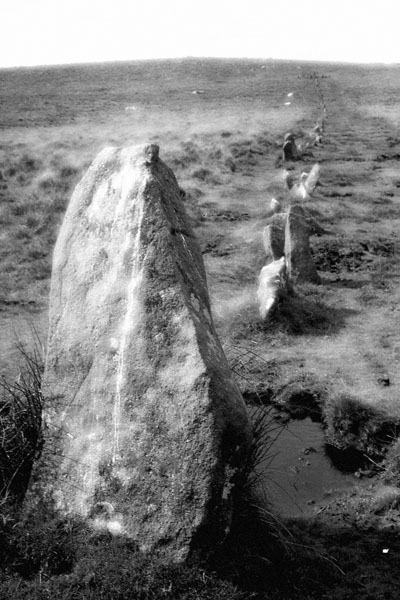 Down Tor Stone Row, Dartmoor (Infa Red)