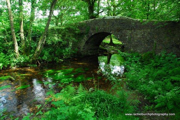 Meavy Bridge Dartmoor
