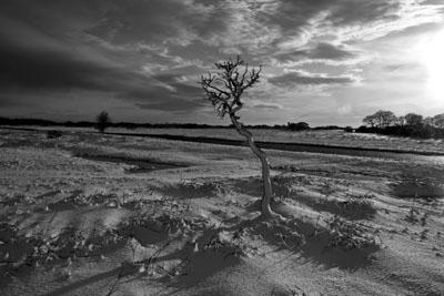 Snow on Plasterdown Dartmoor