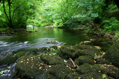 River Walkham, Bedford Bridge, Dartmoor