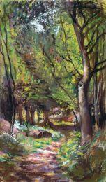 Sunlit path in the old Botanical Garden, Bristol [pastel]