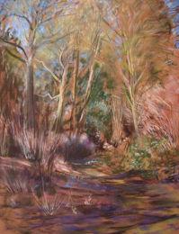 Morning sunlight in the woods in Bristol's old Botanical Garden [pastel]