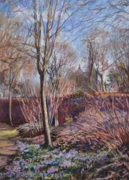 Spring crocuses in the old Botanical Garden, Bristol [pastel]