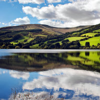 WELSH REFLECTION
