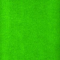 Neon Lime