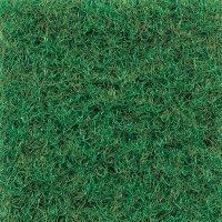 Patio - grass