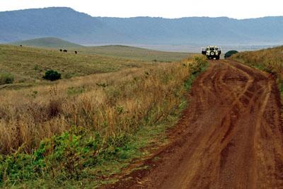 Safari road, Tanzania