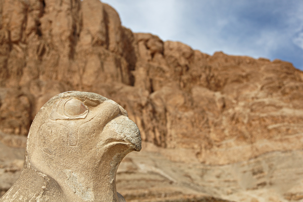 Falcon, Temple of Hatshepsut, Luxor