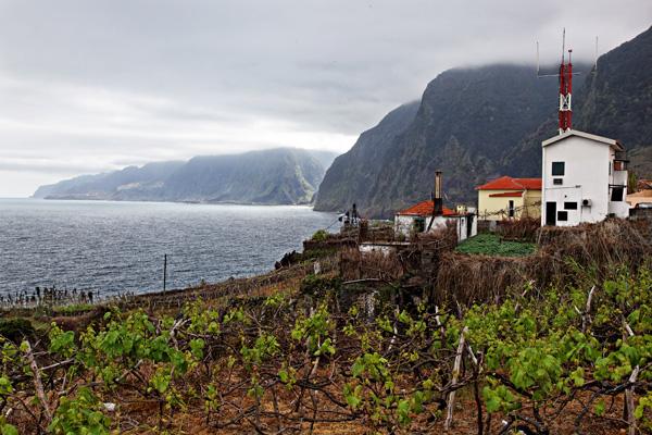 Coastal Madeira