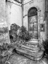 Procida Door & Palms