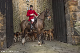 The Percy Hunt New Years Day Meet 2016