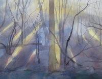 January - Winter Morning Light