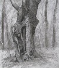 May: Hollow Oak