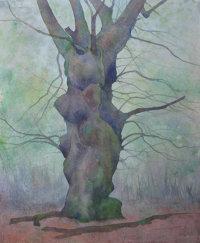 July - Venerable Oak