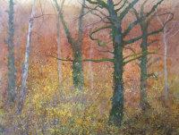 November - Hazel Whipped by Autumn Wind