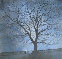 Night Tree II
