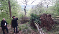 with renowned woodland ecologist, George Peterkin, Lady Park Wood