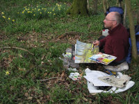 Painting wild daffodils in Lea & Paget's Wood - April 2016