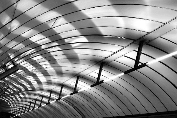 1 Tube Ceiling
